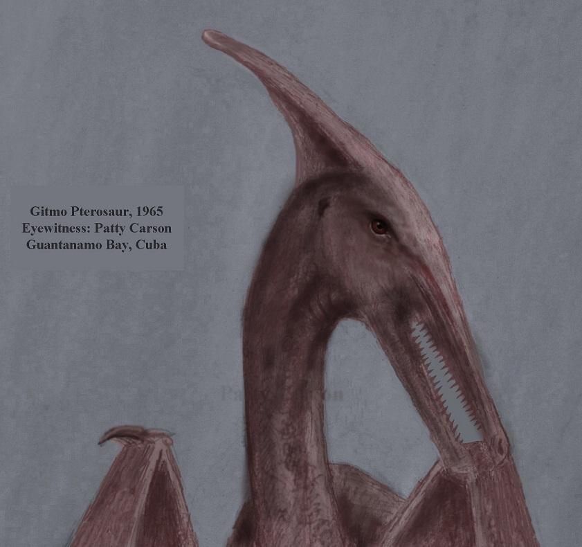 """""""Gitmo Pterosaur"""" of Cuba"""