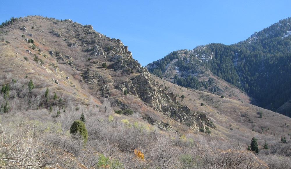 near the bottom of Neff's Canyon, Utah