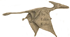 Sketch of pterosaur seen and drawn by Eskin Kuhn