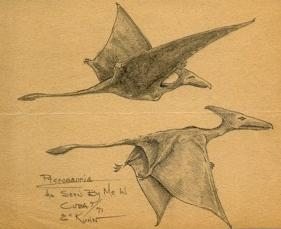 Pterosaurs seen by Eskin Kuhn