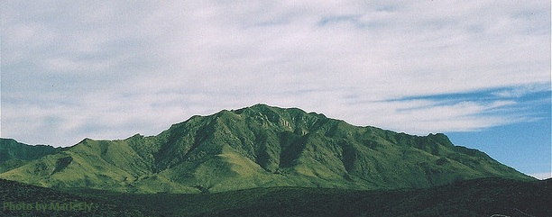 Green mountain near Marfa, Texas